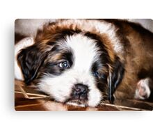 Her Name Is Lola Canvas Print
