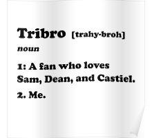 Tribro Definintion V2 Poster