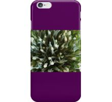 TULIPS FROM ABOVE iPhone Case/Skin