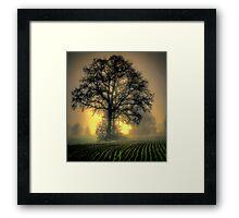 In The Early Light Framed Print