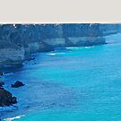 Great Australian Bight - S A - 2014 by salsbells69