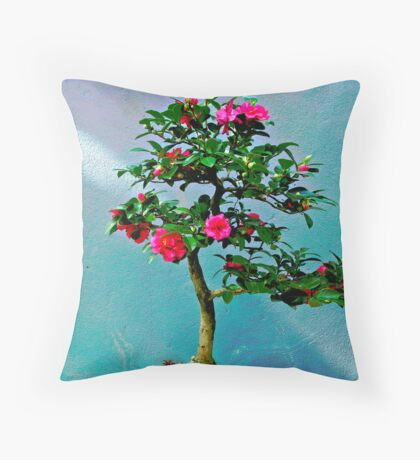 """...I wish you shelter from the storm,   a cozy fire to keep you warm... Throw Pillow"