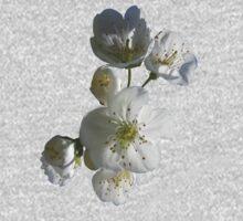 cherries in blosssom on blue serenity One Piece - Short Sleeve