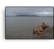 Driftwood Family Untouched Canvas Print