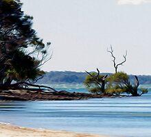 Beach at Coochiemudlo by John Catsoulis