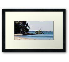 Beach at Coochiemudlo Framed Print