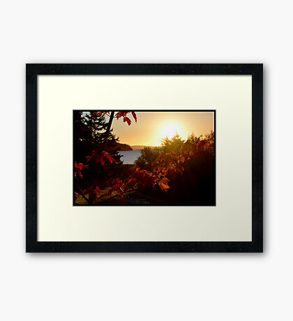 Fall on the Bras d'Or Framed Print