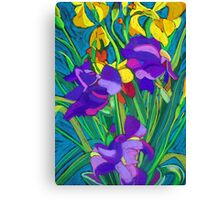 Mixed Iris Canvas Print