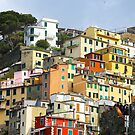 All About Italy. Piece 7 - Riomaggiore Spirit by Igor Shrayer