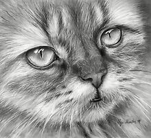 Beautiful Cat Pencil Drawing by OlechkaDesign