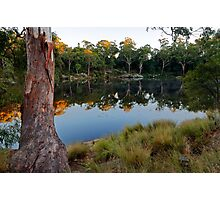 Lake Parramatta Morning Photographic Print