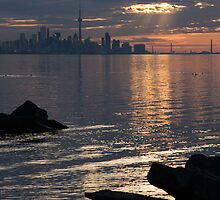 Good Morning, Toronto - the Skyline From Across Humber Bay by Georgia Mizuleva