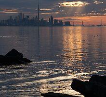 Good Morning, Toronto - the Skyline From Across Humber Bay by Georgia Mizuleva