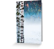 Birches in the mist Greeting Card