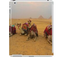 Pyramids and Camels iPad Case/Skin