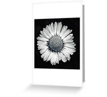 Retro Daisy Greeting Card