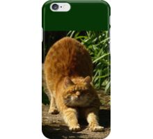 Waking cat iPhone Case/Skin
