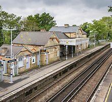 Railway Station by Sue Martin