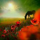 Red Meadow by Igor Zenin