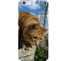 On a mouse hunt iPhone Case/Skin