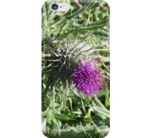 The Thistle iPhone Case/Skin
