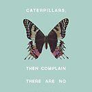 We Kill All the Caterpillars by Zeke Tucker