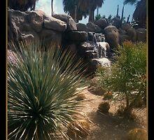 Caliente Oasis, Rancho Mirage Ca. by Sherri     Nicholas