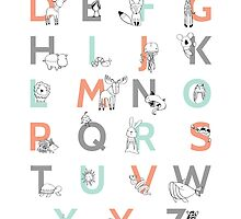 Animal Alphabet by Amy Hamilton