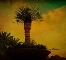 Top Of The Rock, Rancho Mirage, California by Sherri     Nicholas