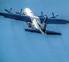 Vero Beach Airshow Power Climb by Noble Upchurch