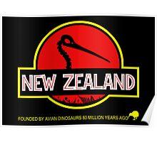 New Zealand: Kiwi Skull Poster
