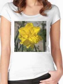 Sunny Yellow Spring - a Golden Double Daffodil Women's Fitted Scoop T-Shirt