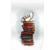 Harry Potter -  Edvige Poster