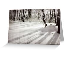 Snowed Forest Greeting Card