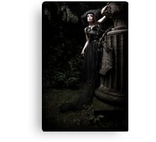 black.tears V Canvas Print