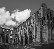Rievaulx Abbey by Stuart Howard