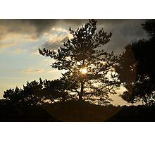 A hilltop in Gothenburg Photographic Print