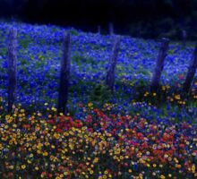 Neon Bluebonnets and Wildflowers at Night Sticker