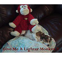 Lighter Monkey Photographic Print
