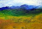Canola landscape by Elizabeth Kendall