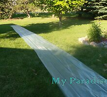 Slide Paradise by Brian Blaine