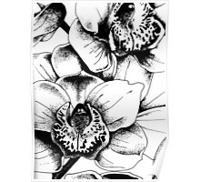 Ink Orchids Poster