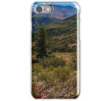 Mt St. Helens regrowth 30 yrs after massive eruption iPhone Case/Skin