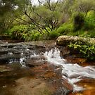 Wentworth Falls Cascade by Terry Everson