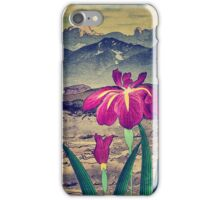 Evening Hues at Jiksa iPhone Case/Skin