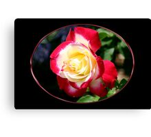 Red, White and Beautiful Canvas Print