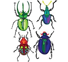 Beetles Photographic Print