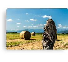 hay bale in the fields Canvas Print