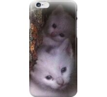 Kittens Hiding In Hollow Tree iPhone Case/Skin