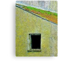 The Mossy Roof Canvas Print
